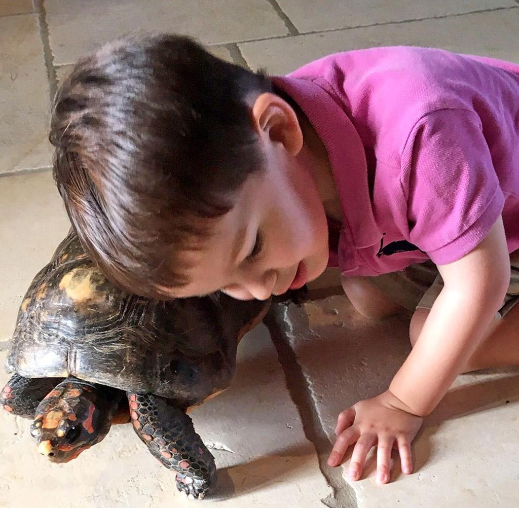 A young boy cuddling a tortoise on Necker Island