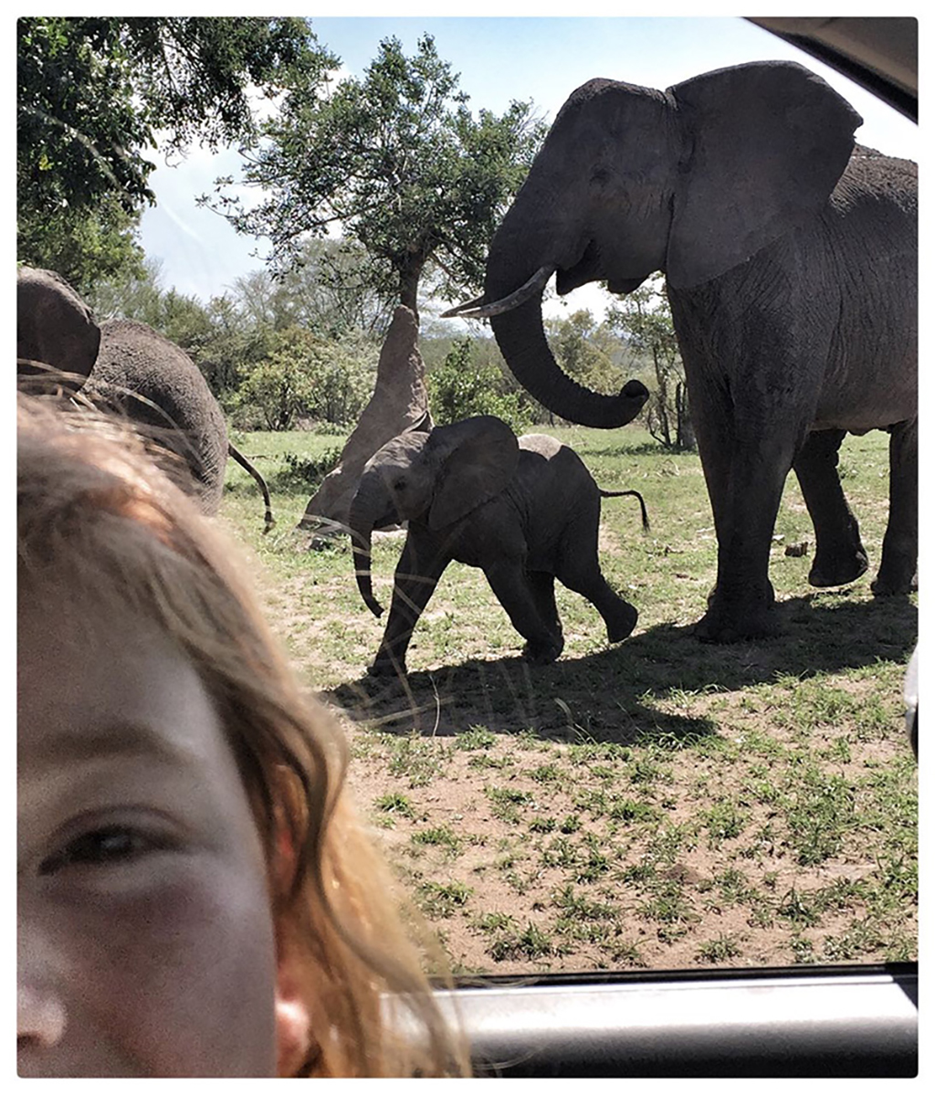 Taeghan Langdon on a game drive and Ulusaba taking a selfie with two elephants