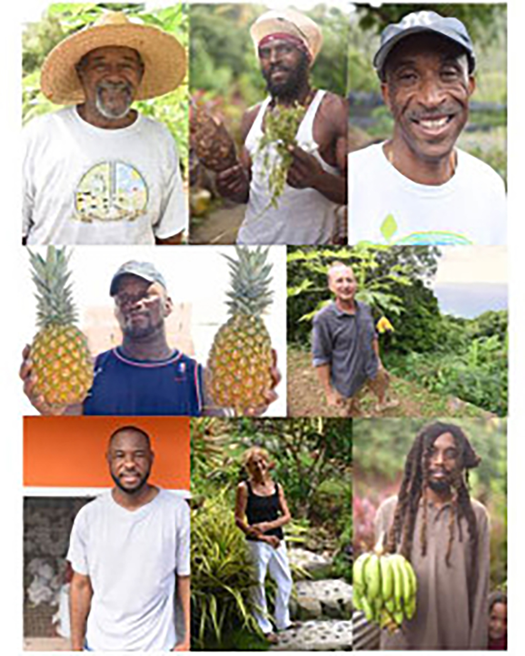 Headshots of farmers living and working in the BVI