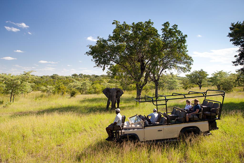 On safari at Ulusaba
