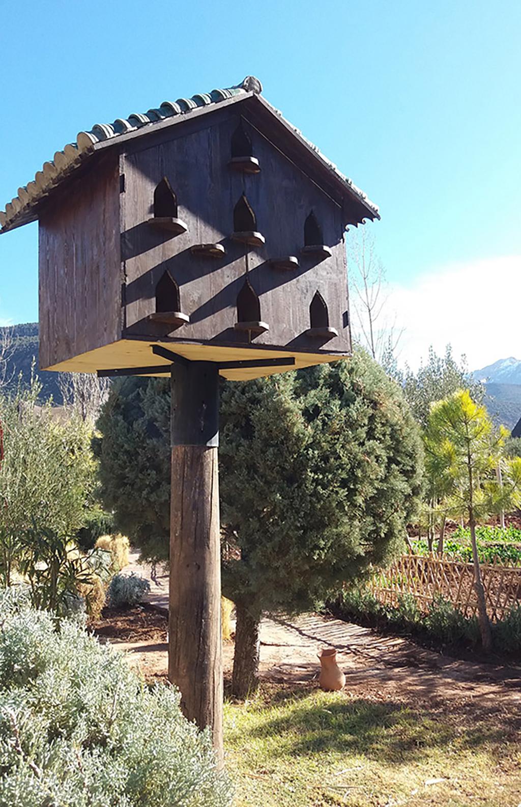 Bird house at Kasbah Tamadot