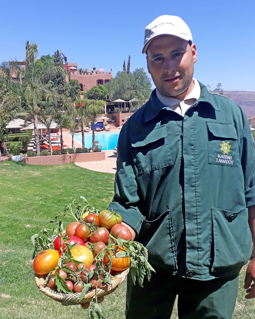 tomatoes at Kasbah Tamadot